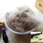 【2019年版】ペット(犬猫)の抜け毛の掃除におすすめのコードレス掃除機