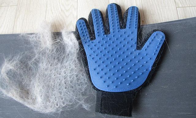 ペット ブラシ 手袋 レビュー(ノルウェージャンフォレストキャット)