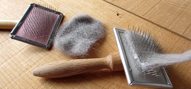 スリッカー 毛の撮り方