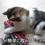 カーペット(絨毯)に絡みついた犬や猫の毛が簡単にとれる掃除機用ヘッド