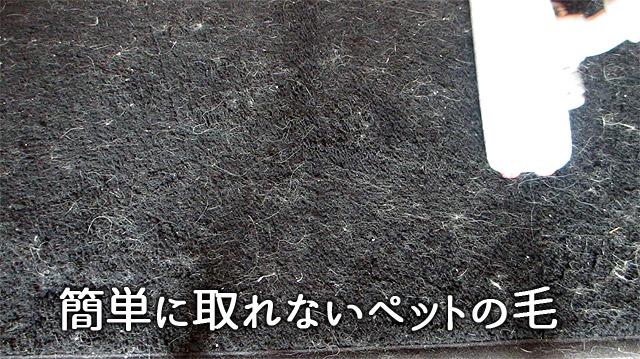 絨毯に絡みついたペットの抜け毛