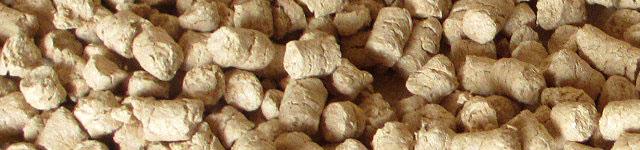 ペットの砂