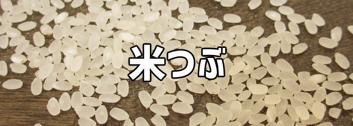 RACTIVE Air<EC-AR2S/EC-AR2SX>ゴミの吸引(米粒)