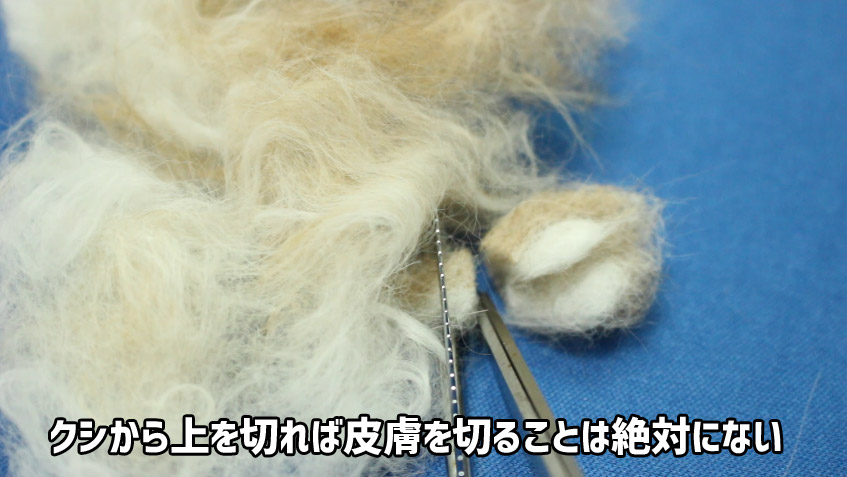 フェルト状になった猫の毛玉を安全に切る方法