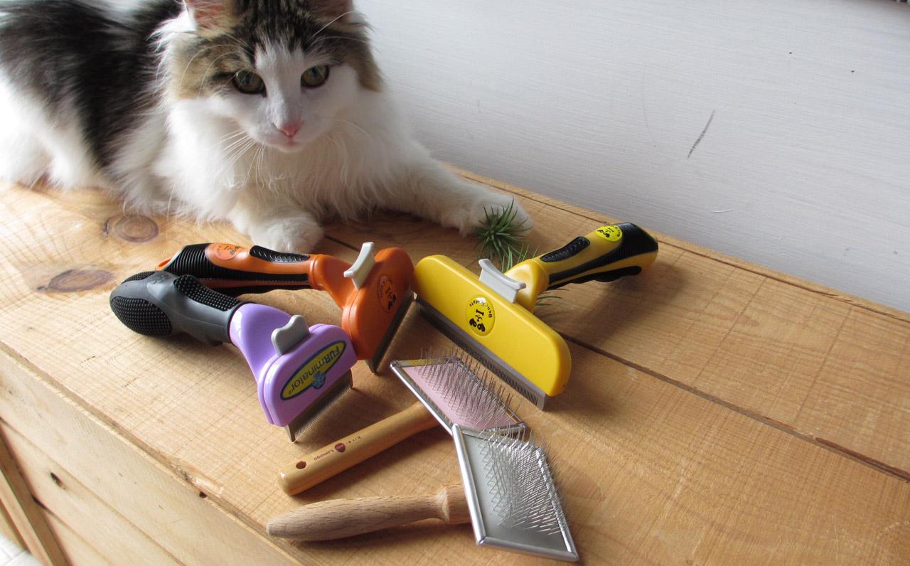 犬や猫のフェルト状になった毛玉を簡単かつ安全に切る方法