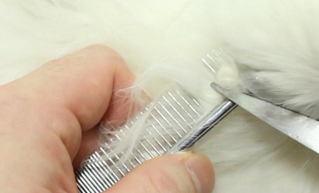 猫の毛玉を切る方法