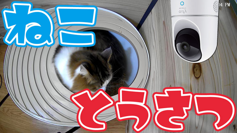 猫トイレ 監視カメラ