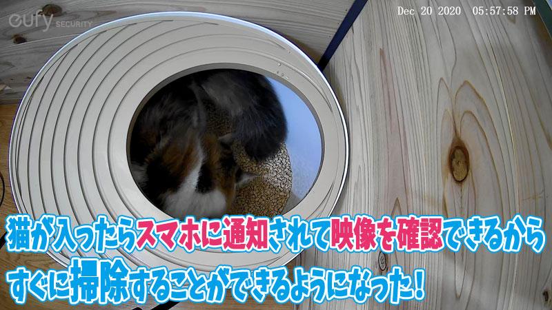 猫トイレ カメラ設置