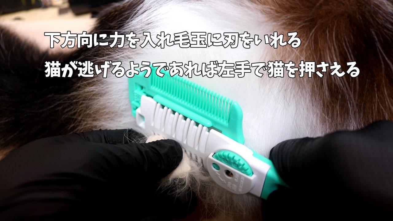 ヘアカッターで猫の毛玉を安全にカット2